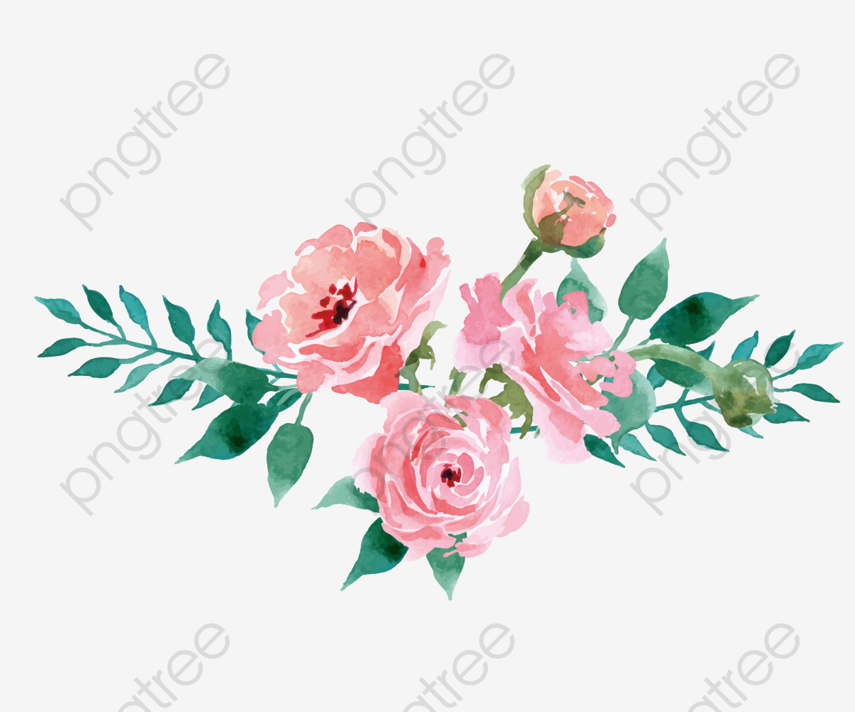 Floral decoration clipart. Drawing plant flowers pink