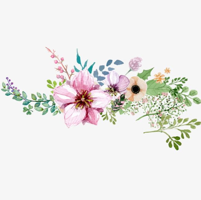 Floral decoration clipart. Hand painted watercolor flower