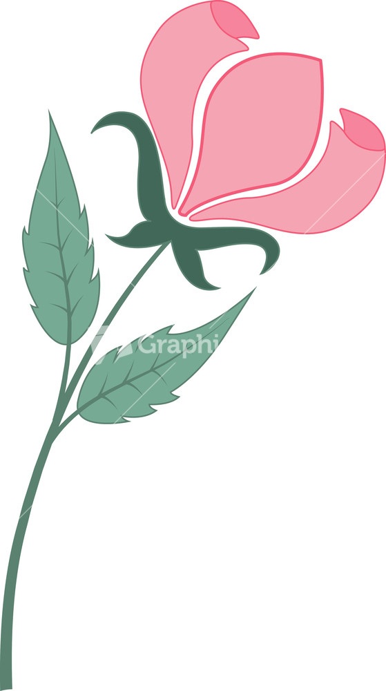 Floral images clipart clip freeuse library Clipart Royalty-Free Vectors, Illustrations and Photos clip freeuse library