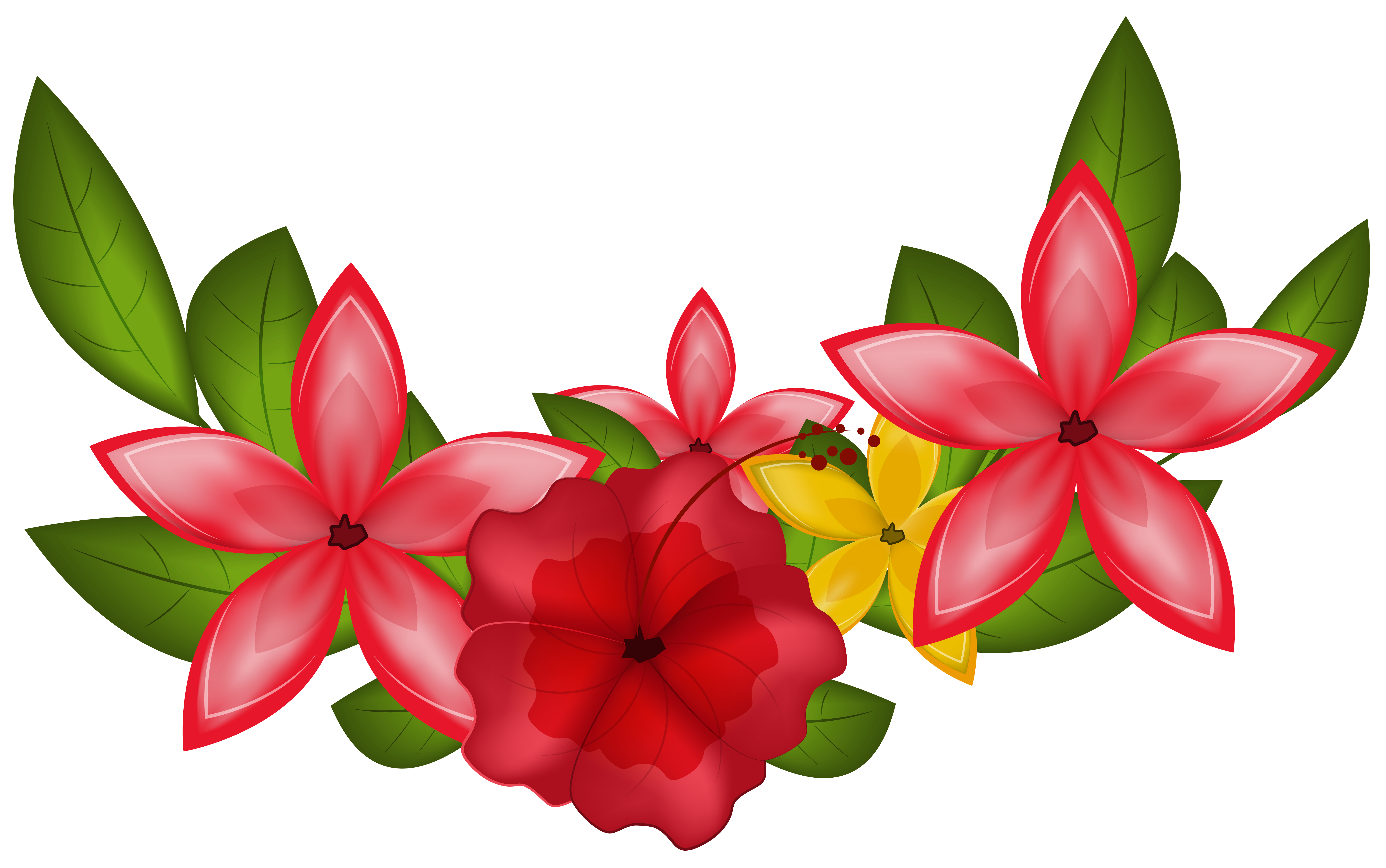 Floral images clipart jpg Exotic Floral Decoration PNG Clipart Image | Gallery Yopriceville ... jpg