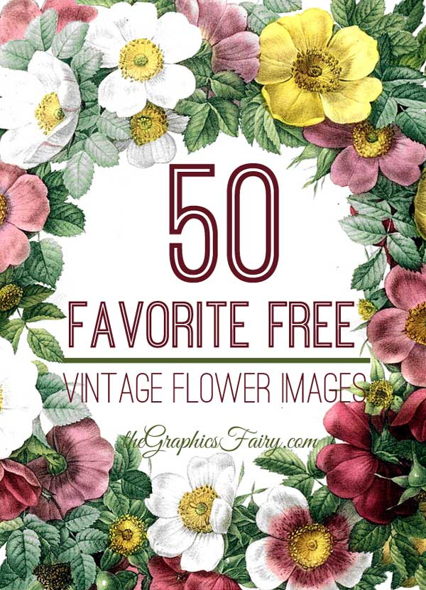 Floral images free graphic royalty free library 50 Favorite Free Vintage Flower Images! - The Graphics Fairy graphic royalty free library