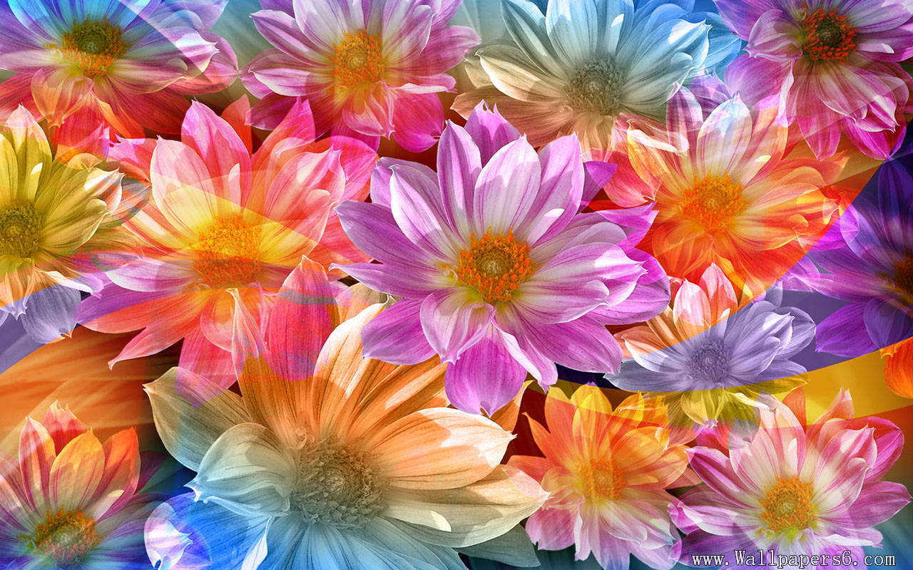 Floral images free download clip transparent library Floral Wallpaper Free Download clip transparent library