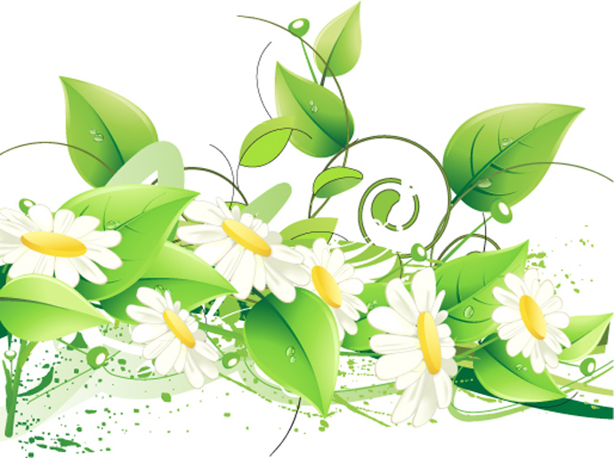 Floral images free download png free Floral images free - ClipartFest png free