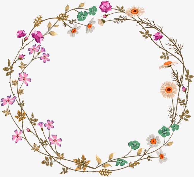 Vine in circle clipart jpg free stock Colorful Simplicity Flower Vine Circle Border Texture, Flower ... jpg free stock