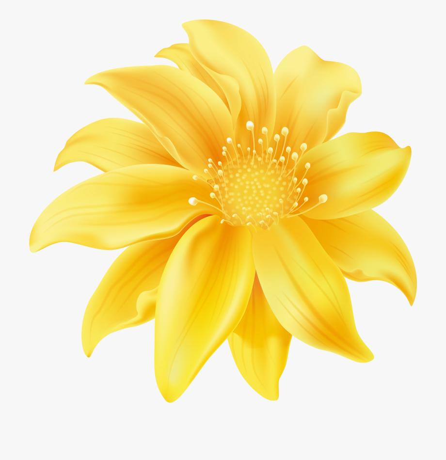 Flores amarelas clipart jpg freeuse Yellow Flower Png Clip Art - Flores Amarelas Sem Fundo #255 - Free ... jpg freeuse