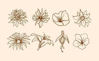 Flores clipart vector vector transparent Flowers Free Vector Art - (47,447 Free Downloads) vector transparent