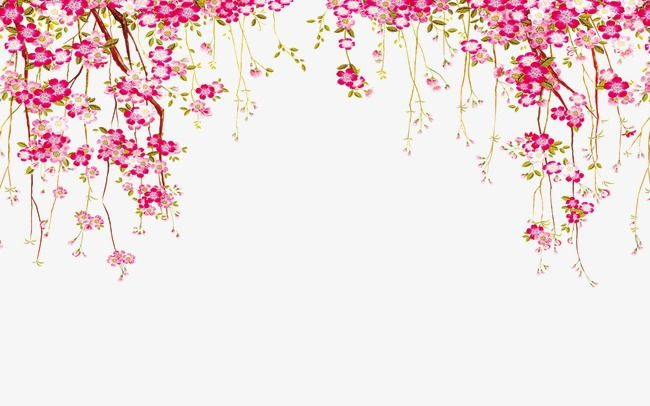 Flores clipart vector royalty free library Flower Border, Flowers, Border PNG Transparent Clipart Image and PSD ... royalty free library
