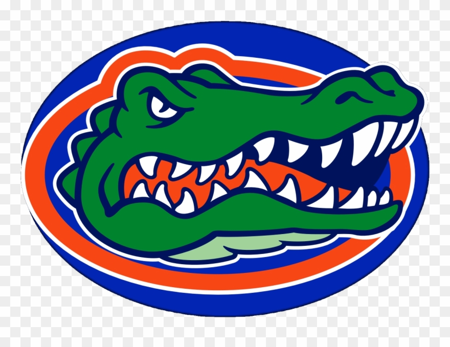 Seminole gators clipart picture free stock The Florida Gators - University Of Florida Gator Head Clipart ... picture free stock
