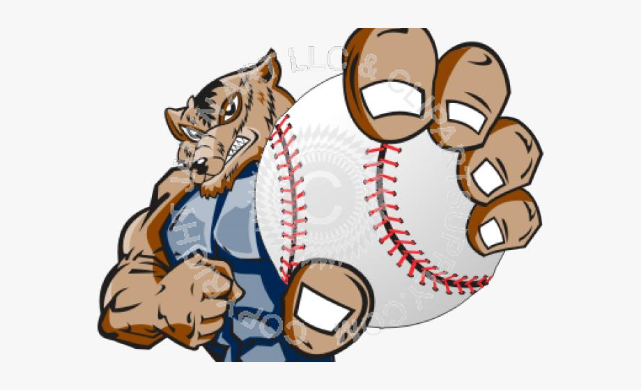 Sports supply graphics cliparts. Florida gators baseball clipart
