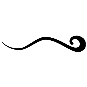 Free downloadable flourishes clipart
