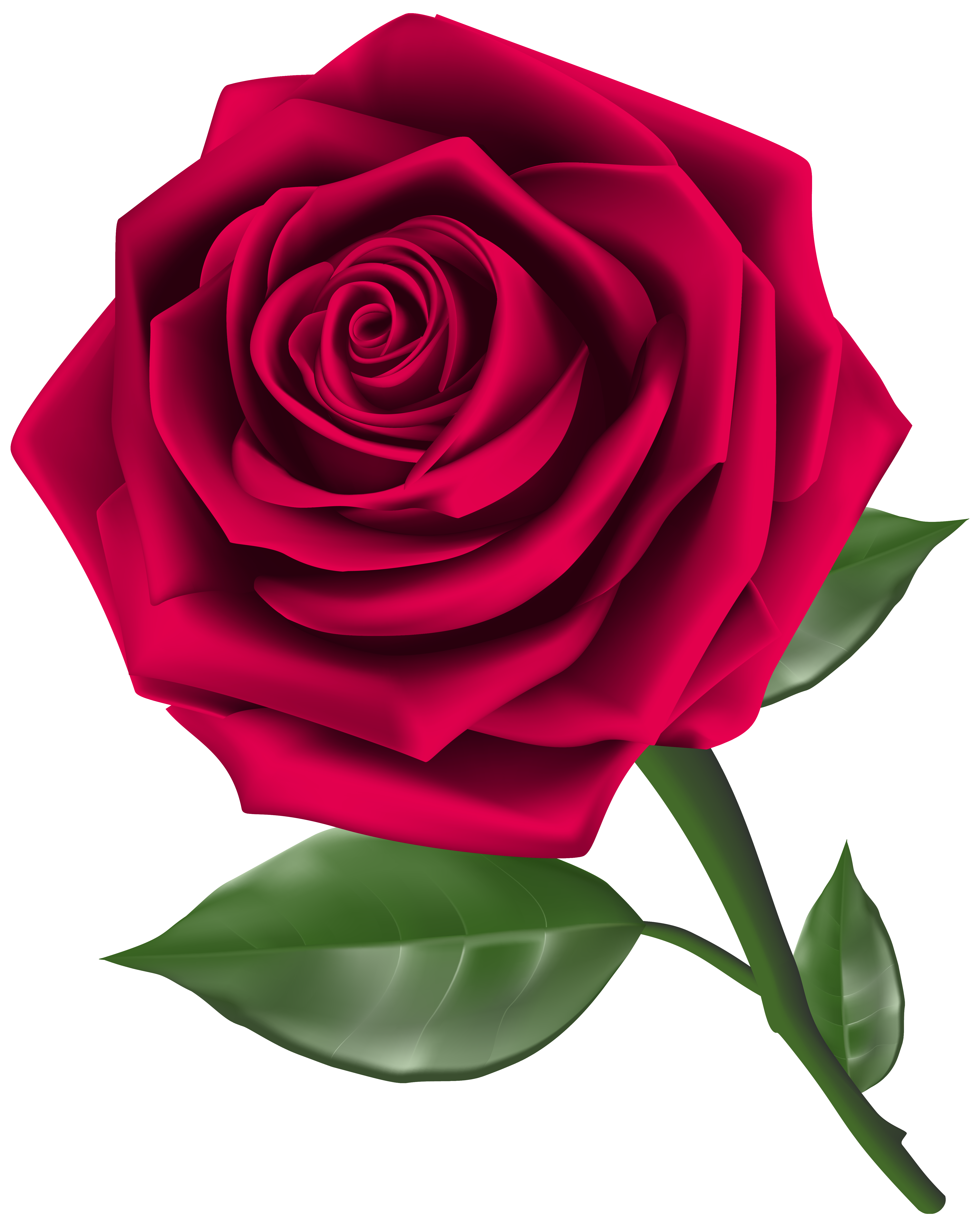 Rose clipart image stock Free 3D Roses Cliparts, Download Free Clip Art, Free Clip Art on ... stock