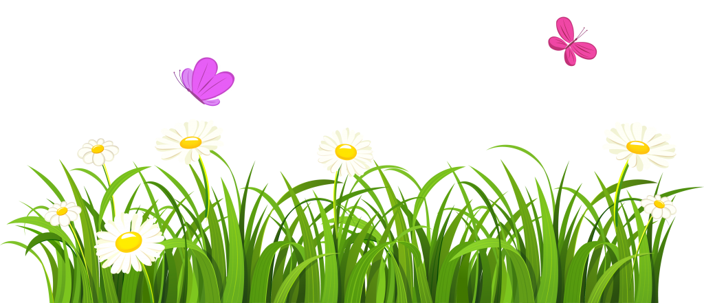 Flower and grass clipart banner free library White Clover Flower Grasses Lawn Grass And White Flowers PNG Clipart ... banner free library