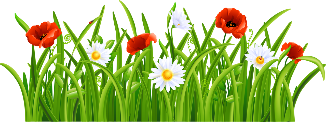 Flower and grass clipart picture transparent 4.png | Pinterest | Clip art, Flower clipart and Decoupage picture transparent