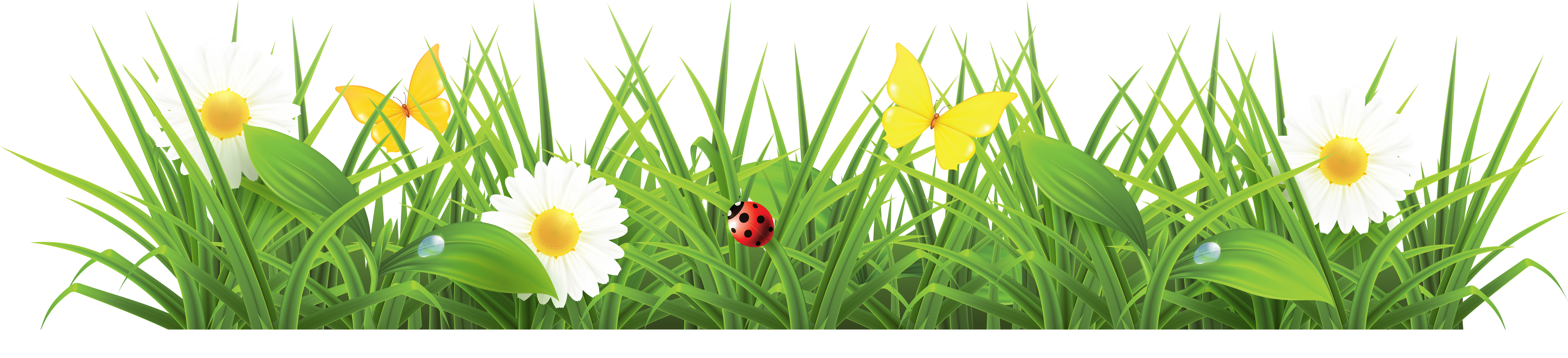 Flower and grass clipart vector transparent library Grass PNG Images – A Live Ornament Tool | PNG Only vector transparent library