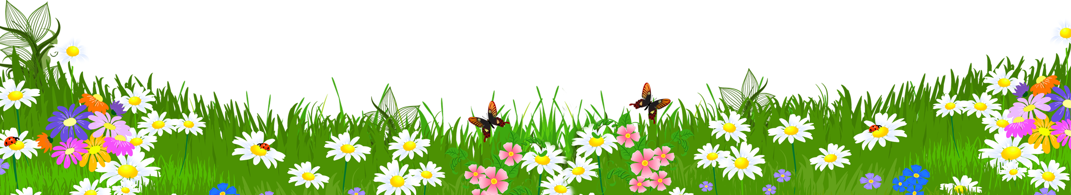 Grass ground with flowers. Flower meadow clipart