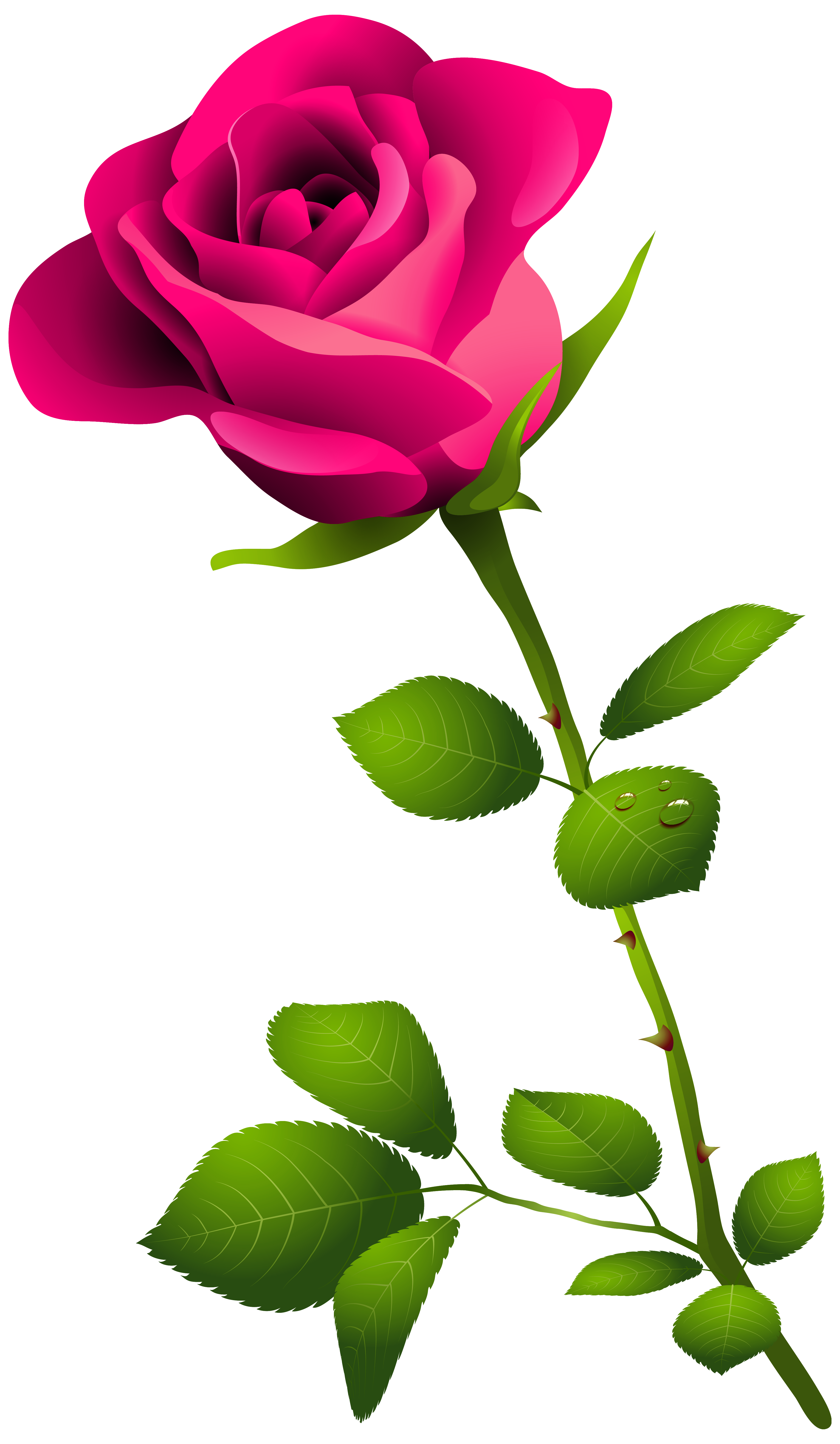 Pink flower with stem clipart image black and white download Pink Rose with Stem PNG Clipart Image | Gallery Yopriceville - High ... image black and white download