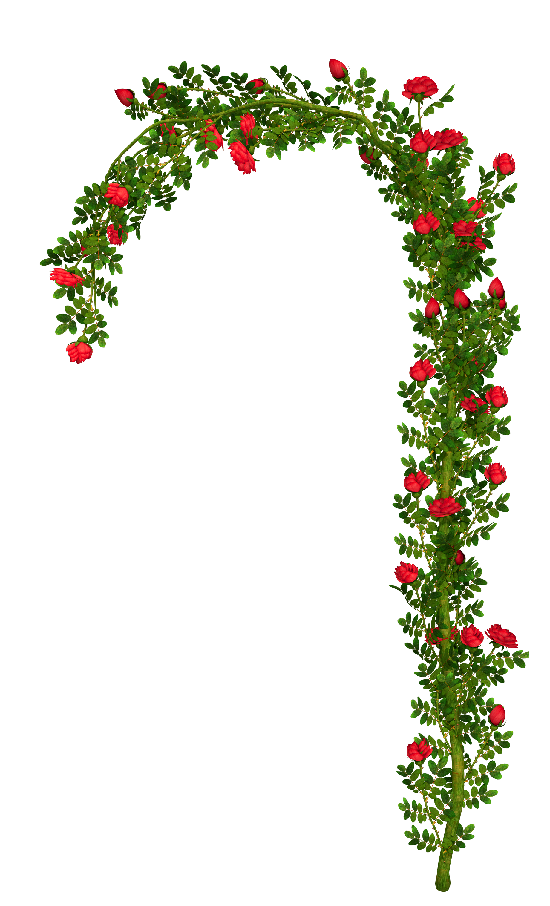 Flower arch clipart vector royalty free library Rosebush Arch Element PNG Clipart Picture | Gallery Yopriceville ... vector royalty free library