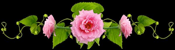 Flower bar clipart image transparent Barres de Separation - virtellife.centerblog | Borders | Flower ... image transparent