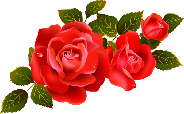 Red rose clipart image vector download Large Red Roses Clipart Element | Clip art | Flowers, Red roses ... vector download