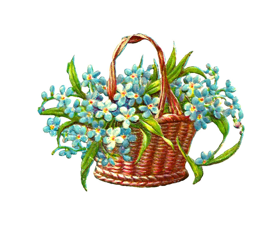 Hanging flower baskets clipart image free stock Forget Me Not Flower Clip Art - Cliparts.co | ♡♡FORGET ME NOT ... image free stock
