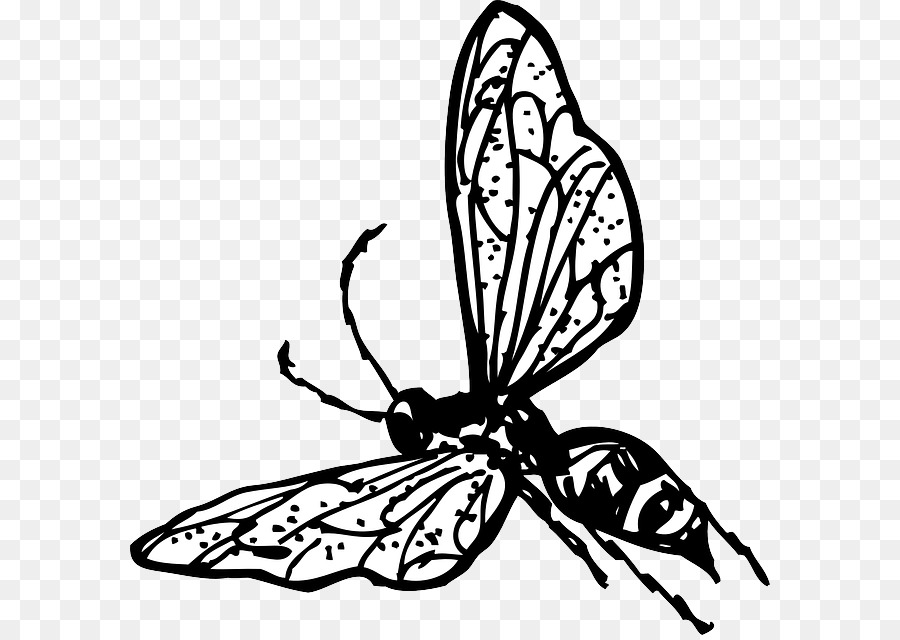 Png download free transparent. Flower bee and butterfly black and white clipart