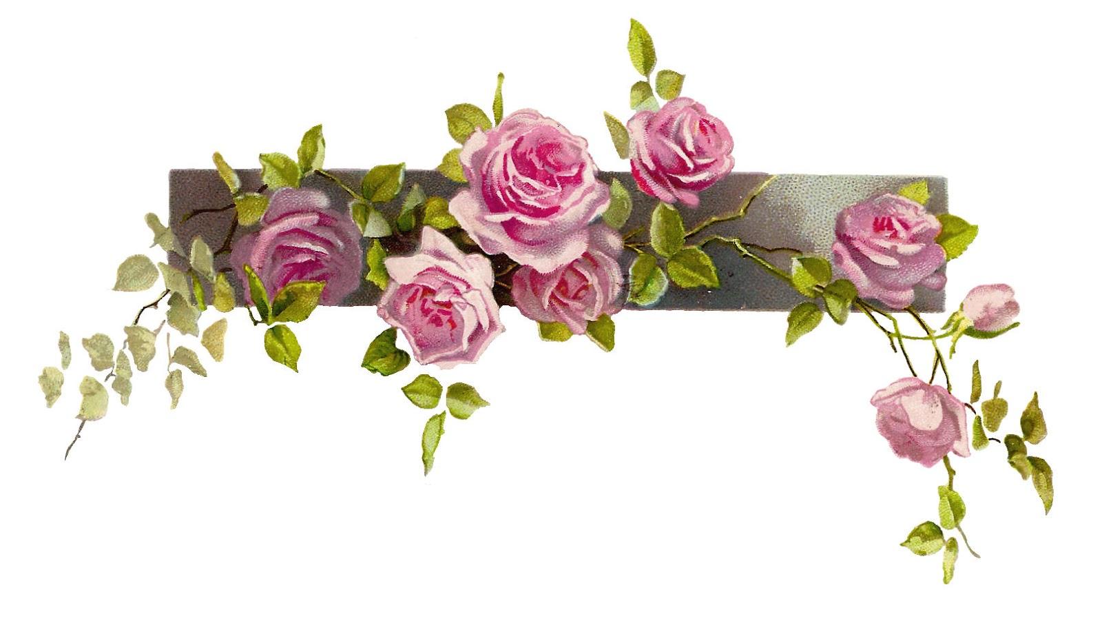 Flower border clipart png