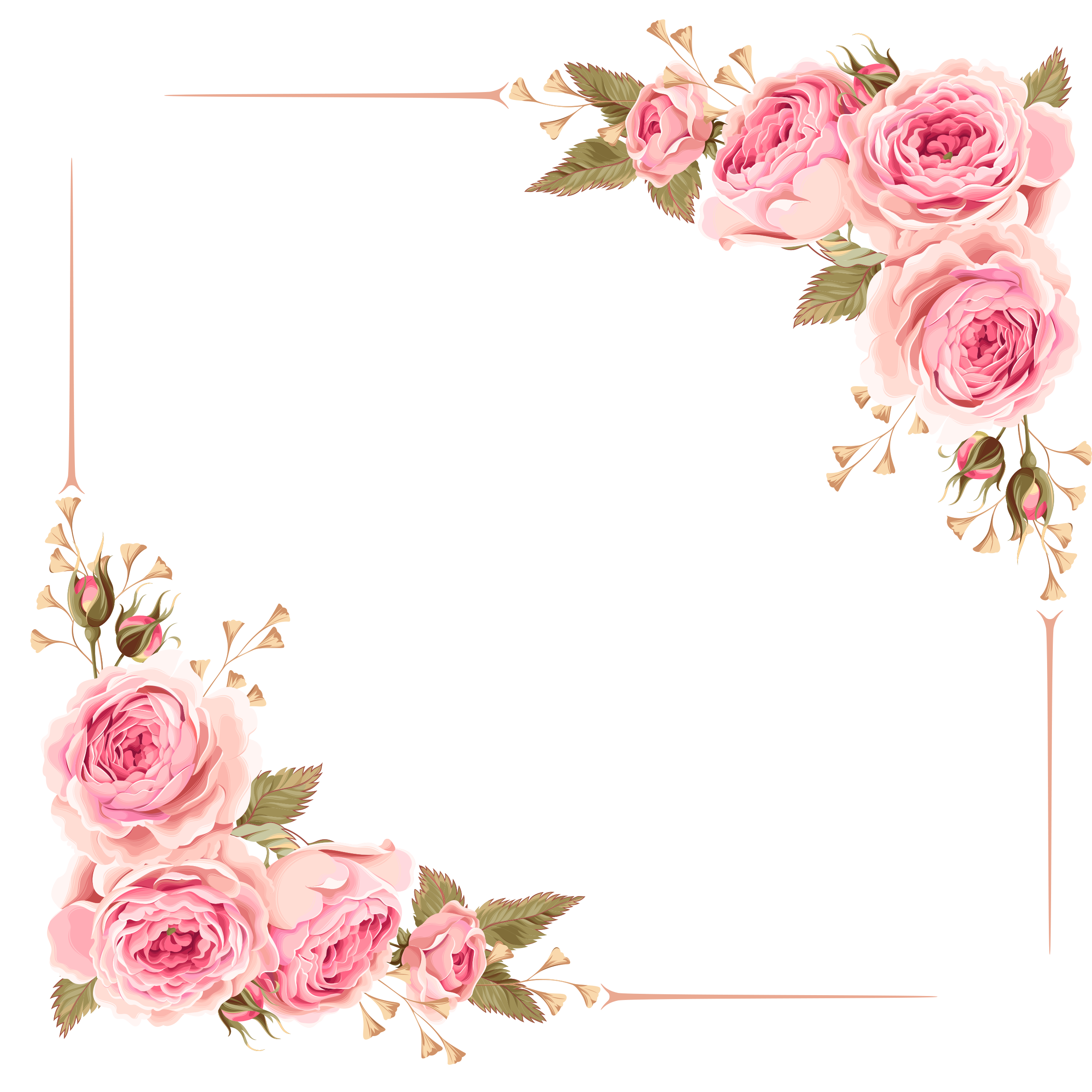 Flower border clipart roses svg library download Free photo: Rose Border - Nature, Pink, Plant - Free Download - Jooinn svg library download