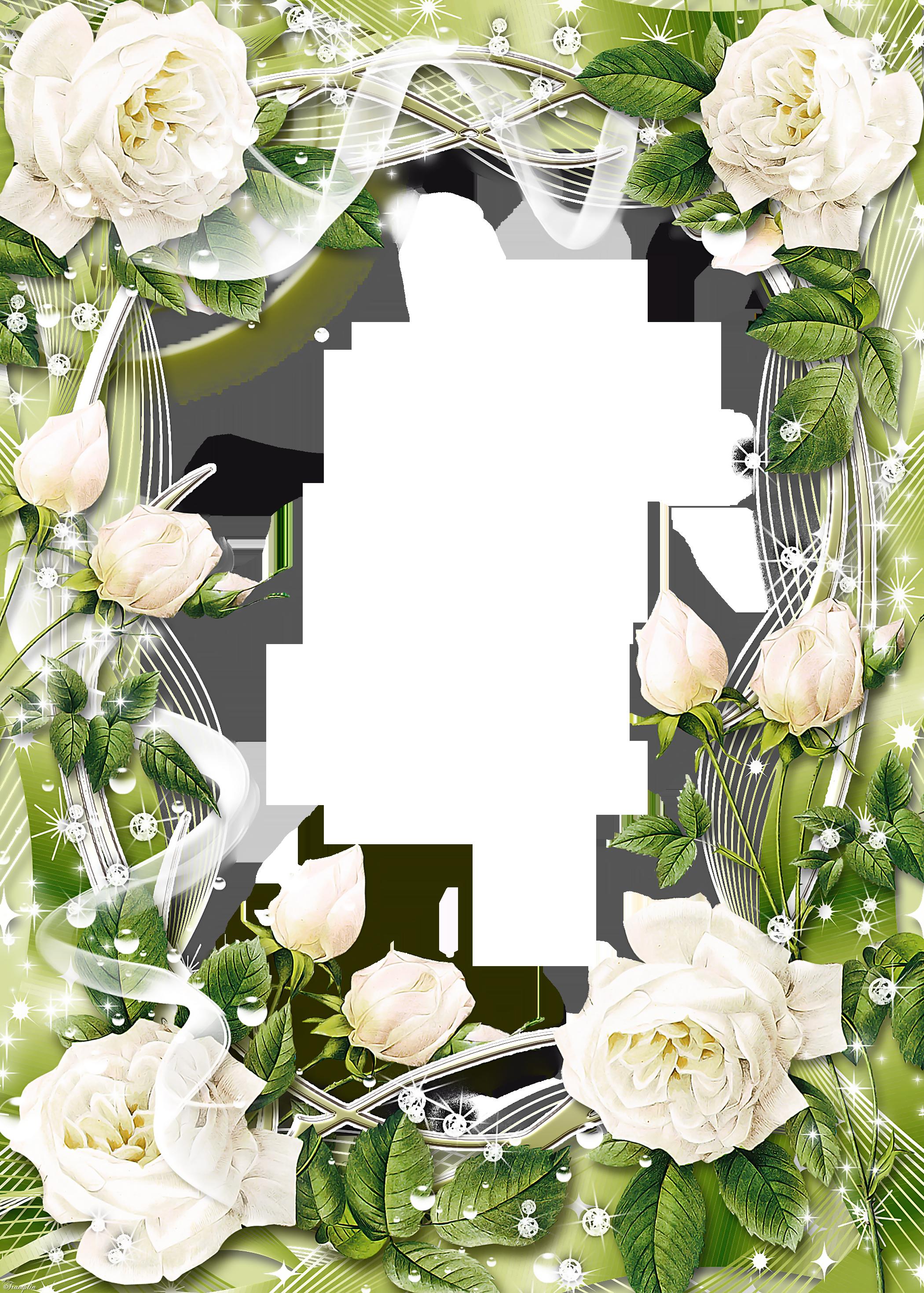Flower border clipart roses banner black and white download Groen Transparant PNG fotolijst met Witte Rozen | clipart borders ... banner black and white download