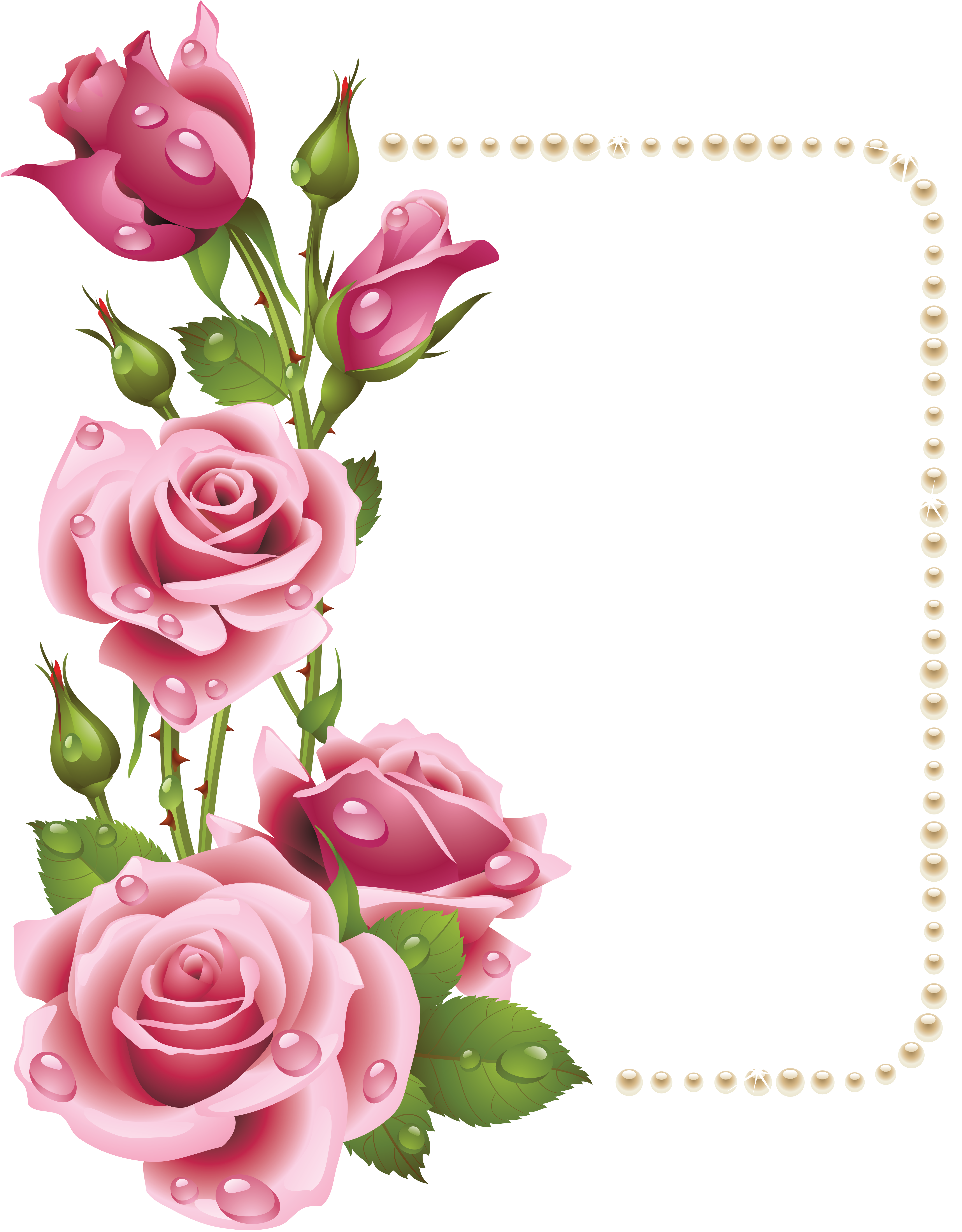 Flower border clipart roses clip royalty free Large Transparent Frame with Pink Roses and Pearls | Цветы ... clip royalty free
