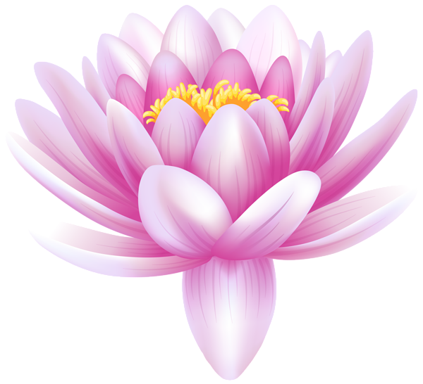 Flower bouquet clipart no background clip transparent download Water Lily Transparent PNG Clip Art Image | #Clip #Art | Pinterest ... clip transparent download