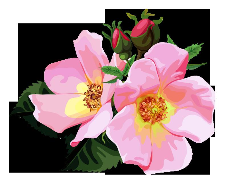 Flower bouquet clipart transparent clip art freeuse stock ROSE BOUQUET CLİPART TRANSPARENT | Design Patterns Studio | Flower ... clip art freeuse stock