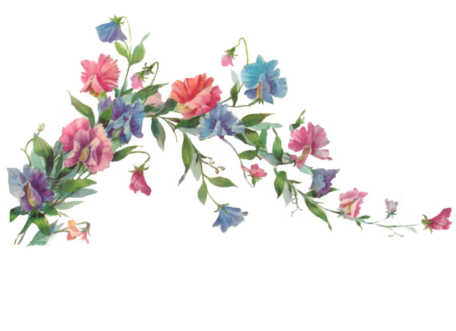 Flower branches clipart vector transparent download Floral branch element by jinifur on DeviantArt vector transparent download