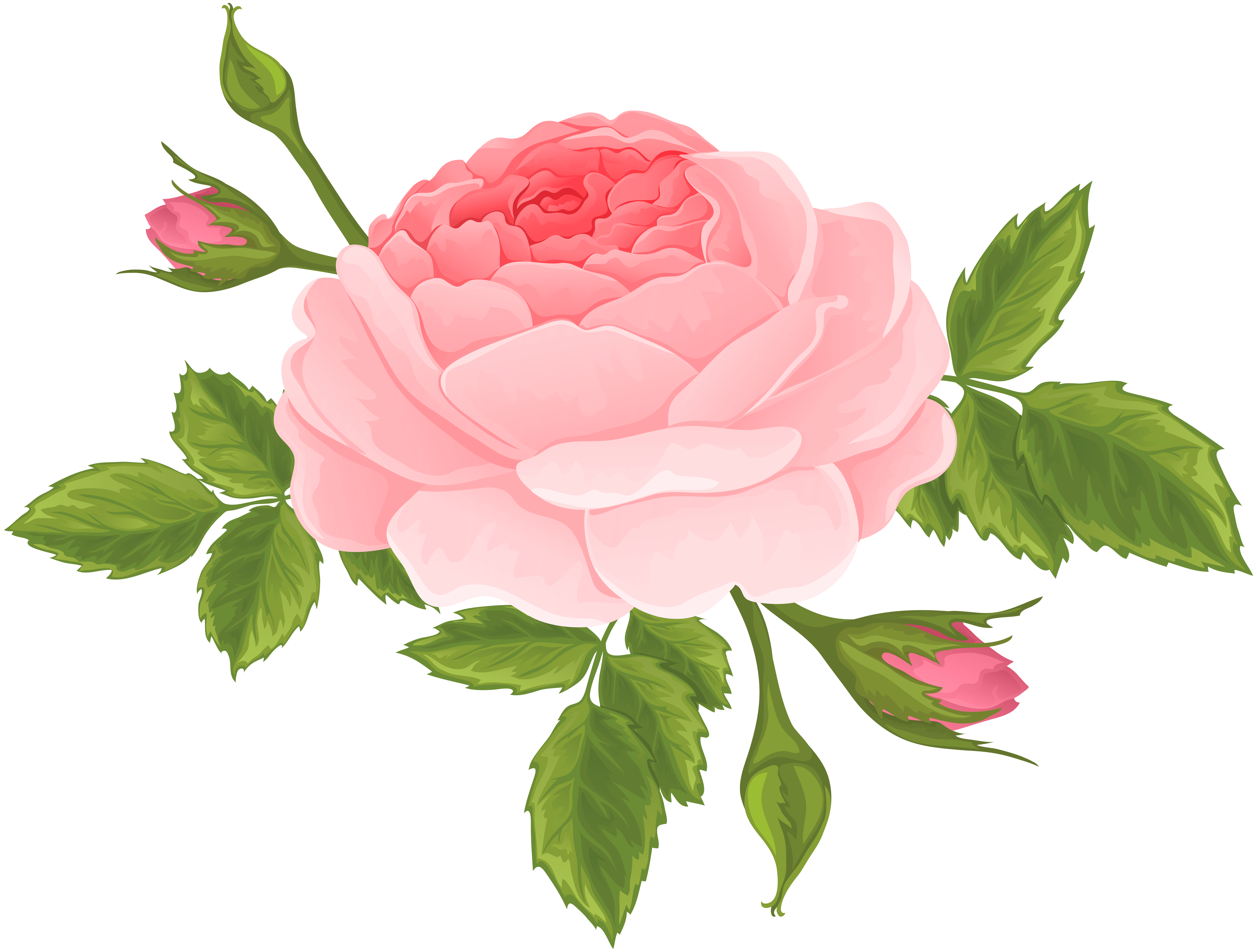 Trolls flower clipart clipart library stock Pink Rose with Buds PNG Clip Art Image | ورود جميلة | Pinterest ... clipart library stock
