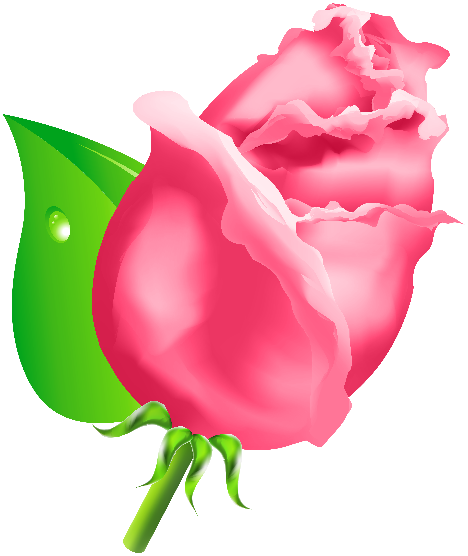 Flower bud clipart svg royalty free download Rose Bud PNG Clipart - Best WEB Clipart svg royalty free download