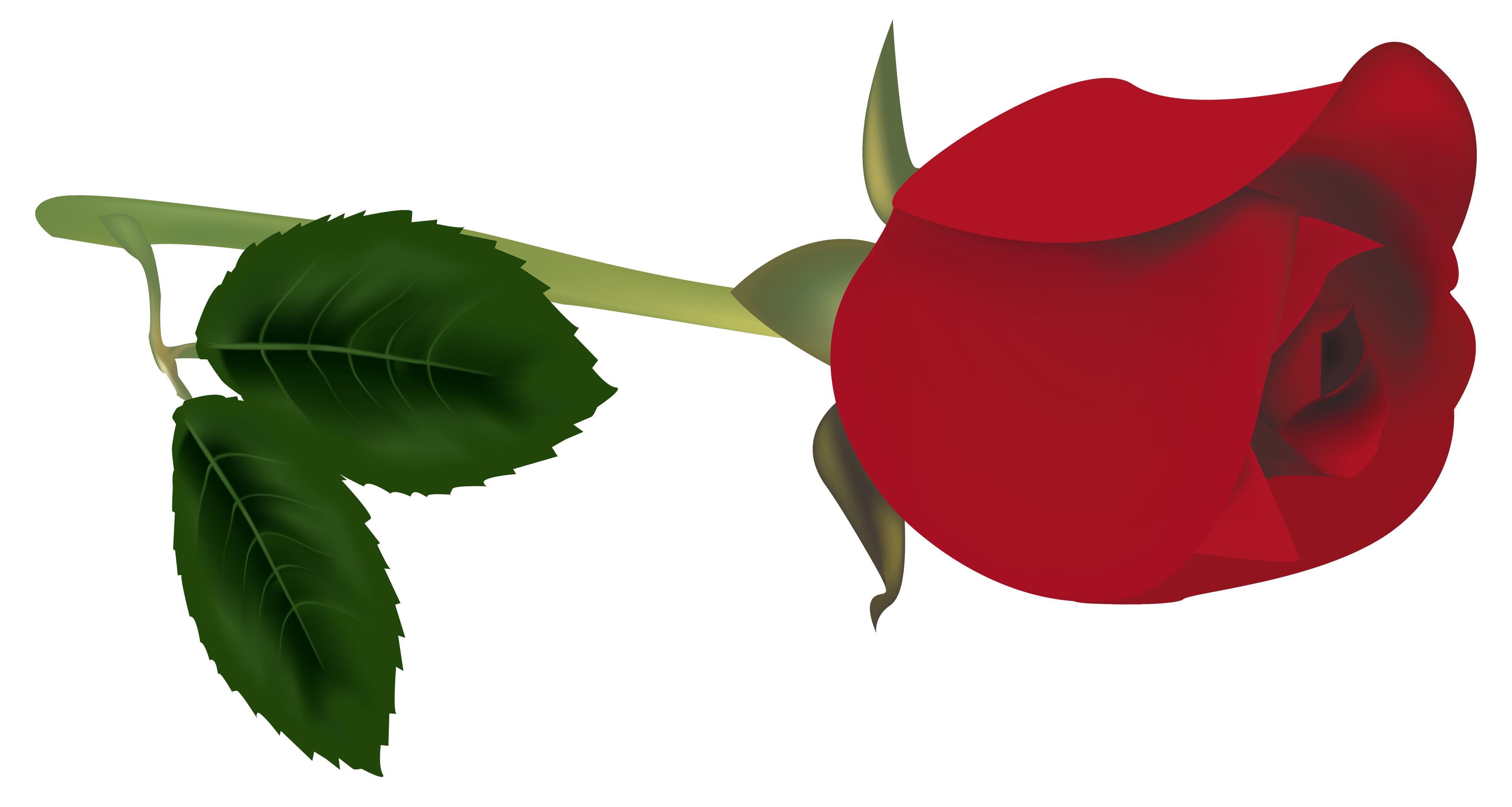 Hand holding flower clipart clipart free library Red Rose Bud PNG Clipart - Best WEB Clipart clipart free library