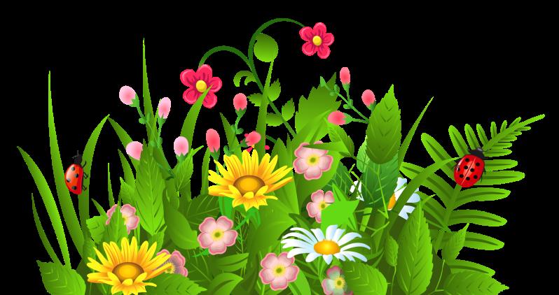 Flower bulb clipart. Parent resource center fundraiser