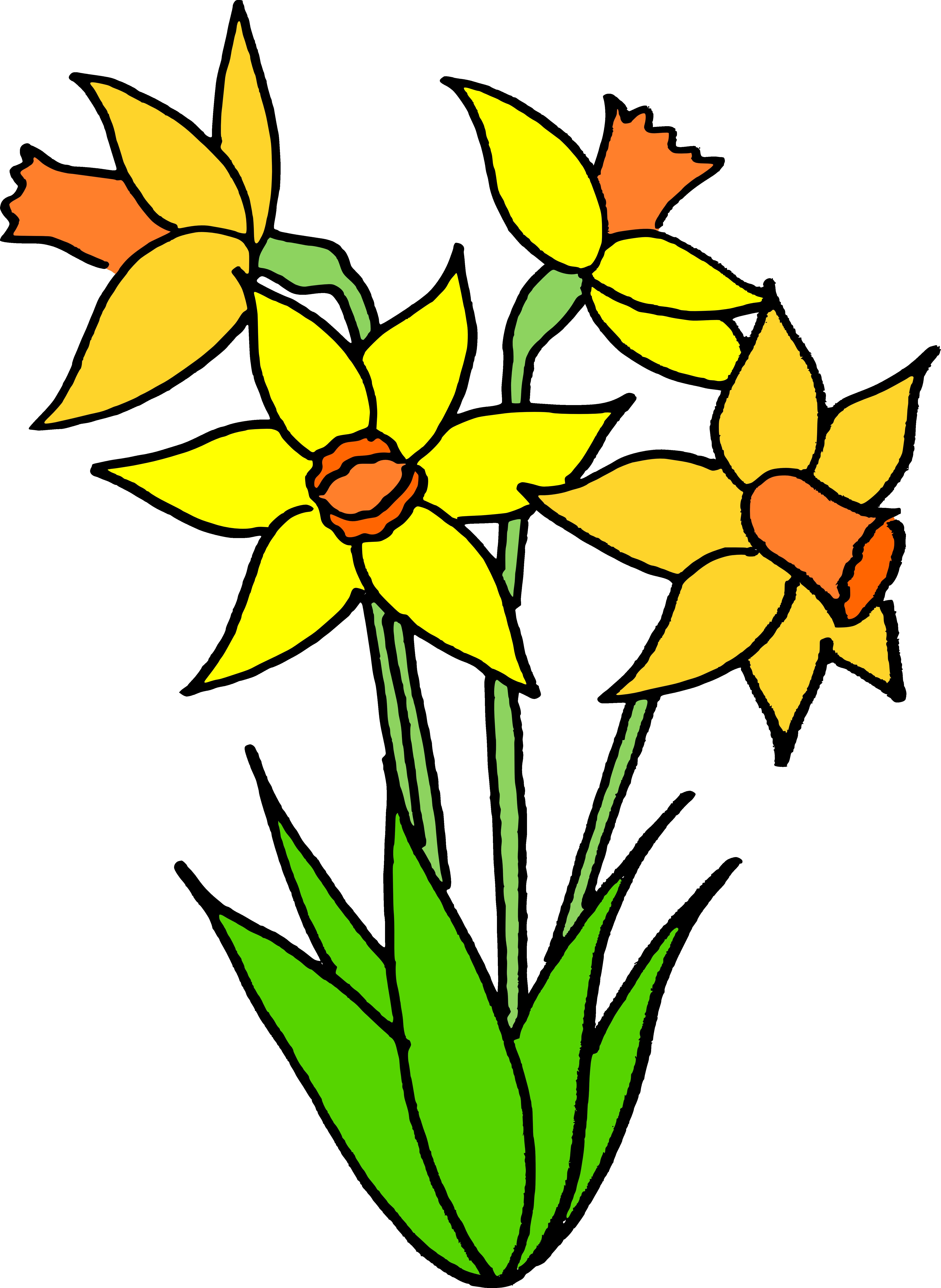 Flower bulb clipart clip art transparent Name that flower answers | The Muddy Bunch clip art transparent
