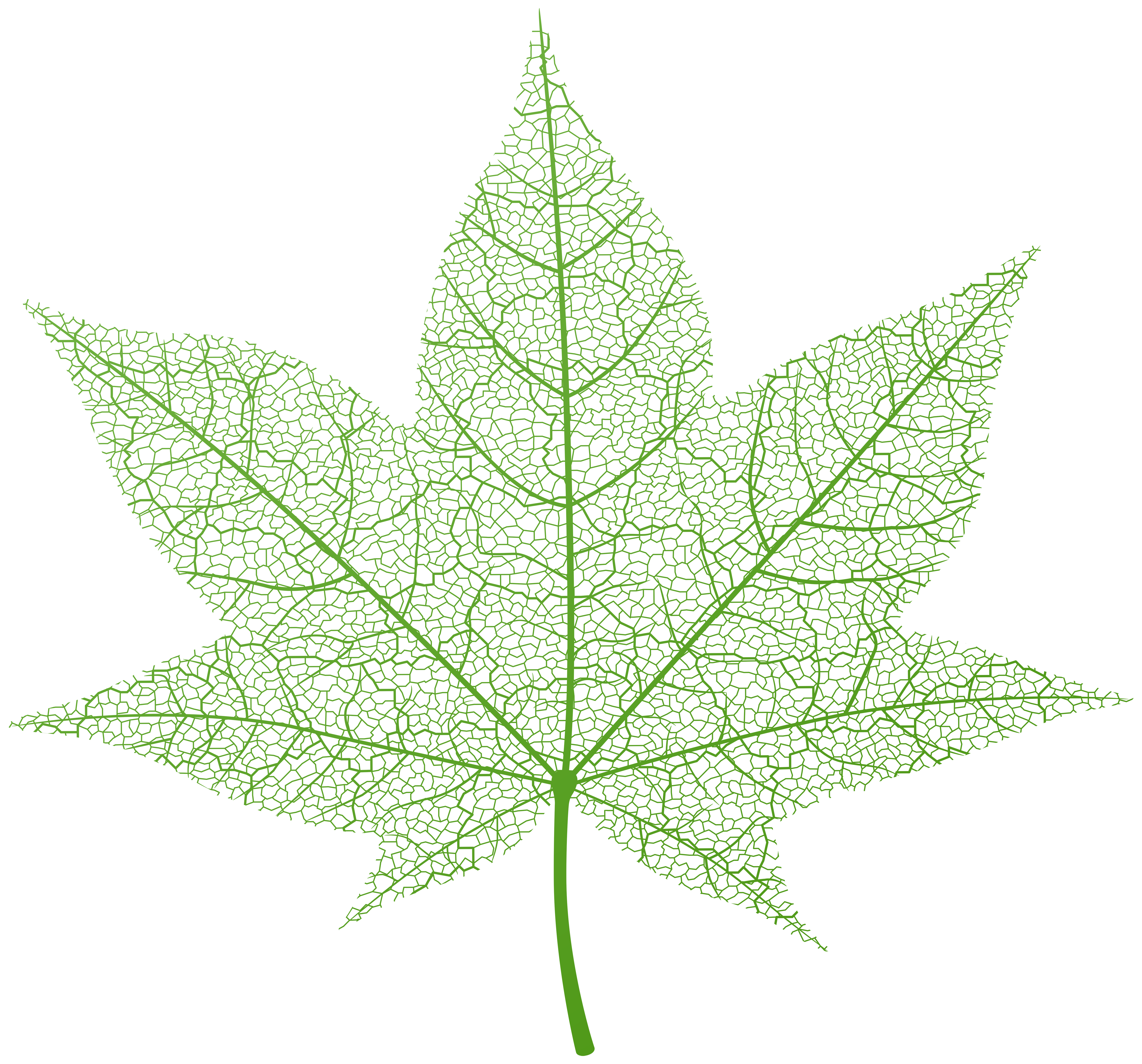 Flower burst clipart png library download Transparent Green Autumn Leaf PNG Clip Art Image | Gallery ... png library download