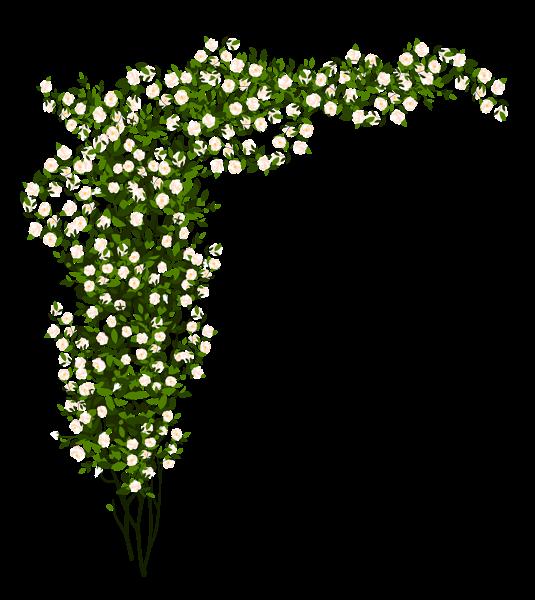 Flower bush clipart svg royalty free stock Decorative Whte Rose Bush PNG Clipart Picture   Floral   Pinterest ... svg royalty free stock