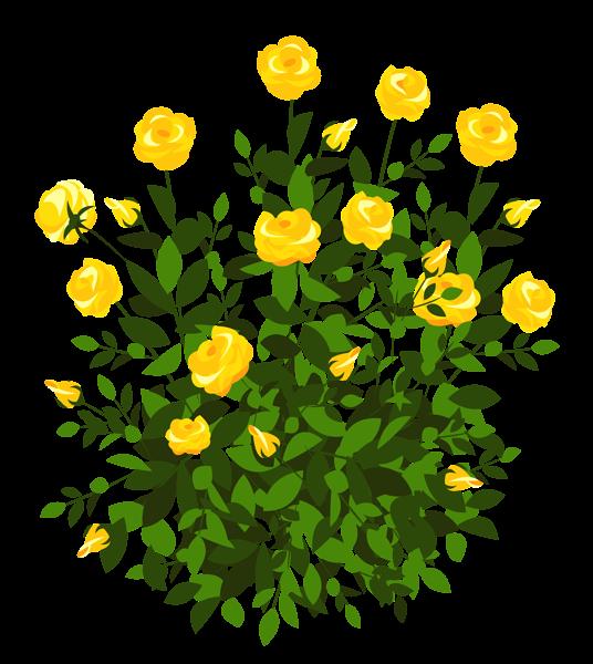 Marigold flower clipart clip transparent download Yellow Rose Bush PNG Clipart Picture | ClipArt | Pinterest | Rose ... clip transparent download