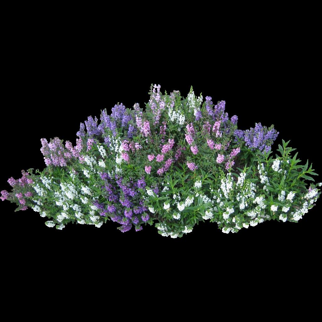 Flower bush clipart clipart Flower Garden Clip Art Free   Скачать PNG фото в высоком разрешении ... clipart