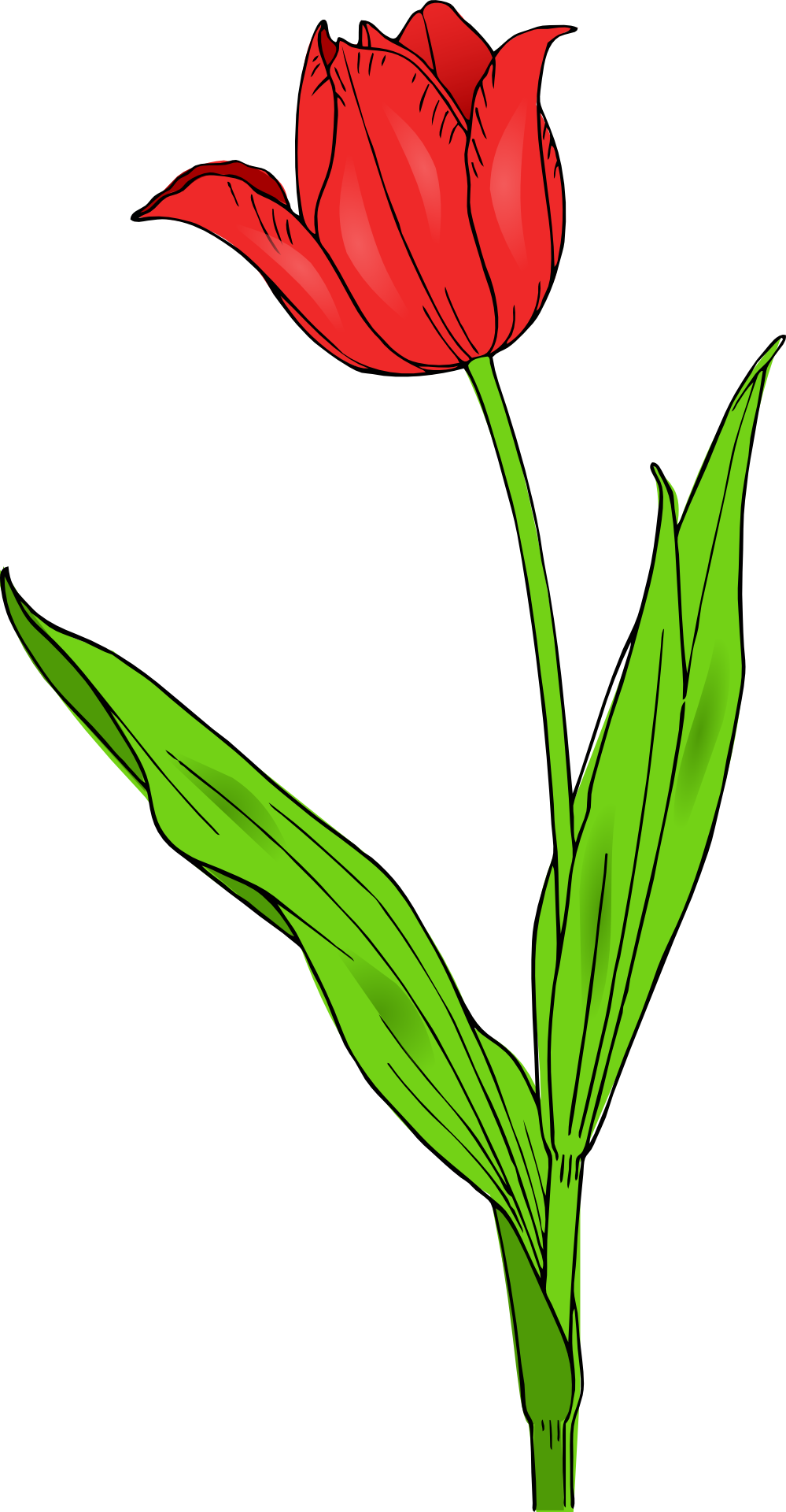 Flower clipart 60 png picture library download tulip flower clip art #1 | 62 Tulip Flower Clipart | Clipart Fans picture library download
