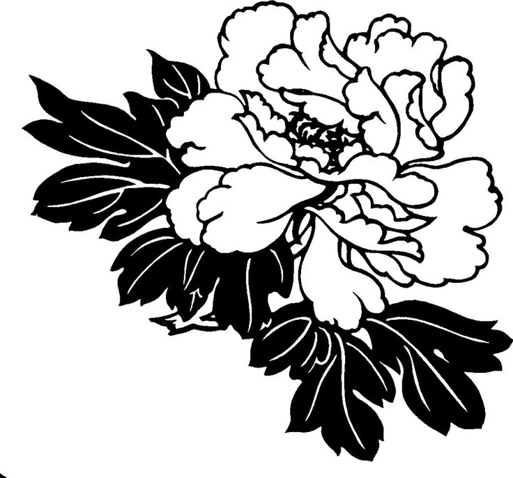 Flower clipart black png png library 17 Best images about Clip Art on Pinterest | Clip art, Clip art ... png library
