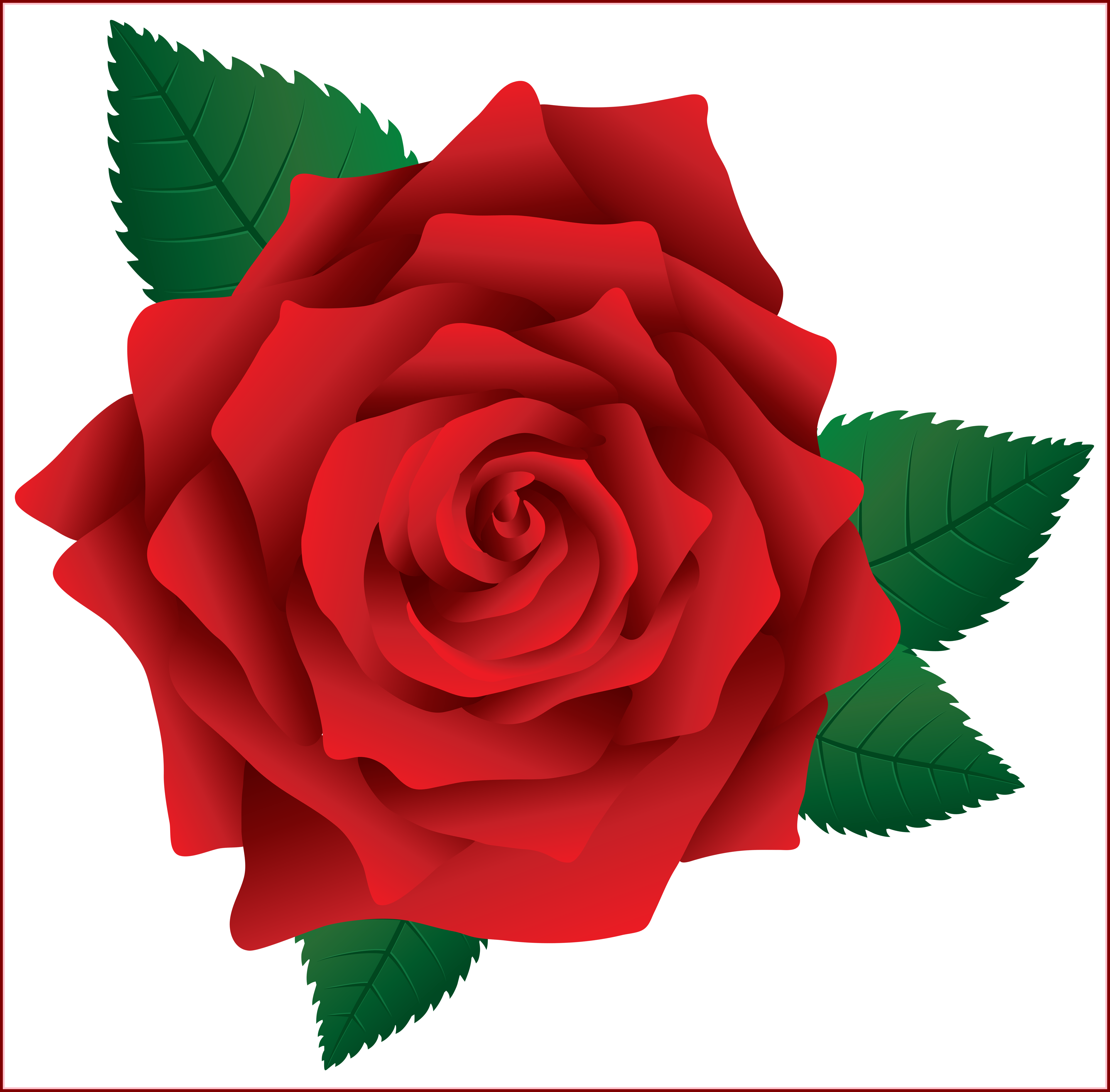 Flower clipart elegant vector transparent download Incredible Clipart And Rose Pict For Red Flower Ideas In Clarkston ... vector transparent download