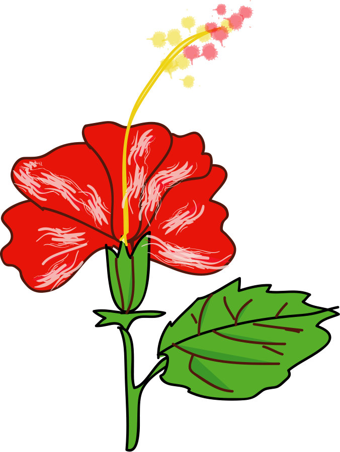 Flowers clipart free download banner transparent stock Hawaiian Flower Clipart Free Download   jokingart.com Hawaiian ... banner transparent stock