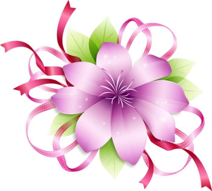 Flower clipart images png png download Flower png clipart - ClipartFest png download