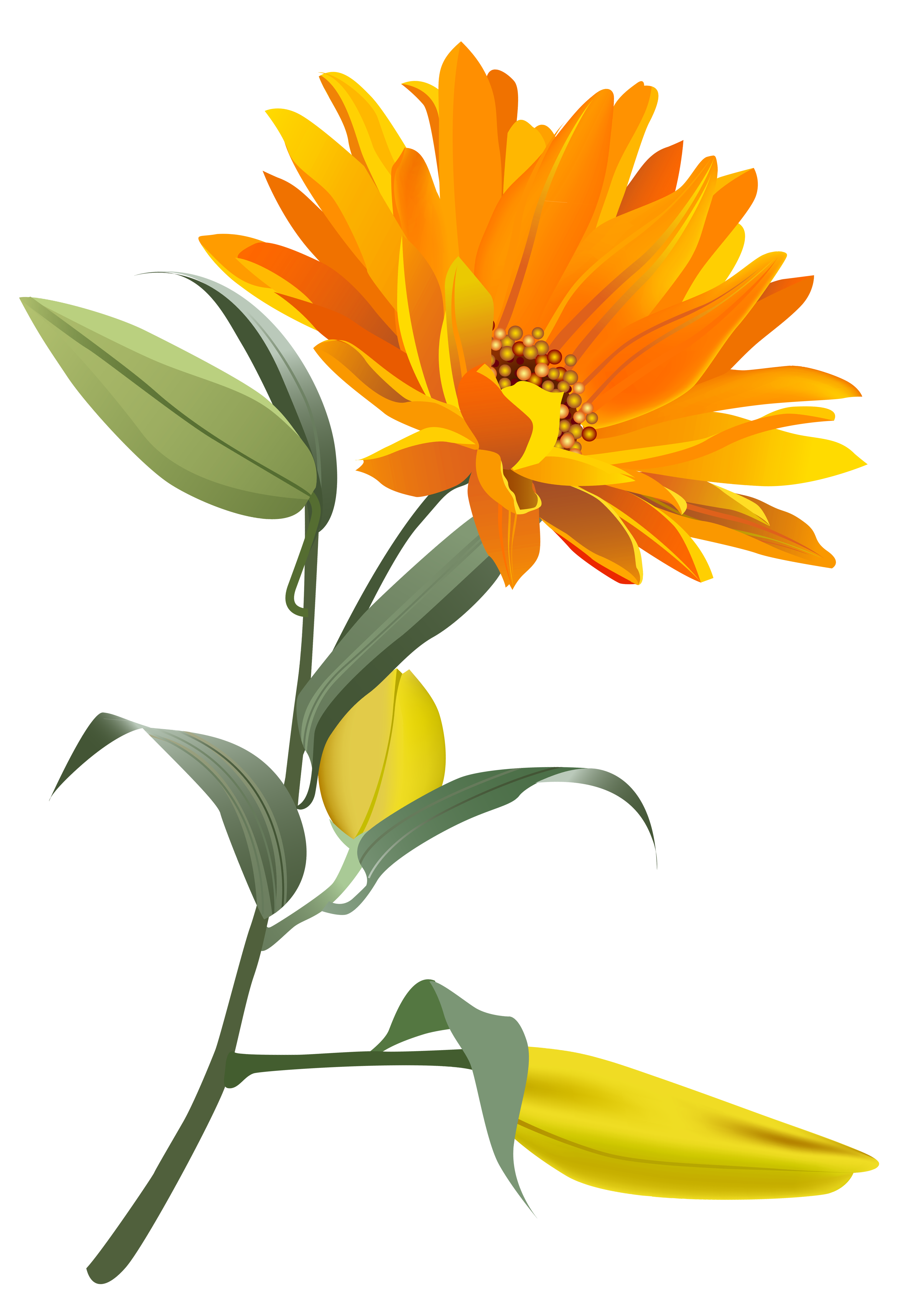 Flower clipart orange clipart royalty free library Orange Flower PNG Clip Art Image | Gallery Yopriceville - High ... clipart royalty free library