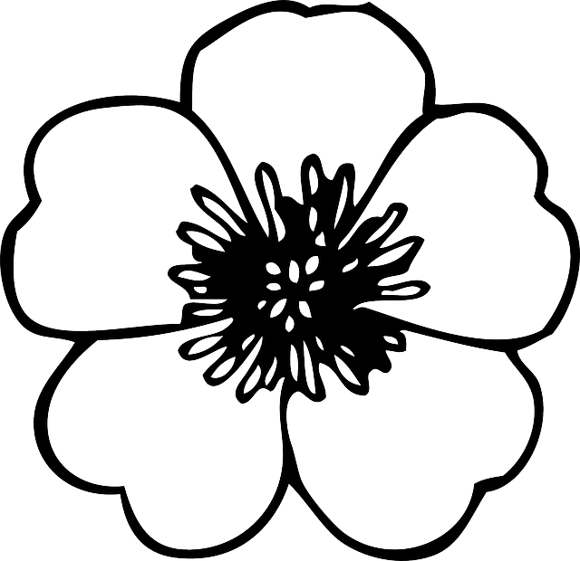 Free flower outline clipart png library black, green, large, simple, small, outline, drawing | Patio ... png library