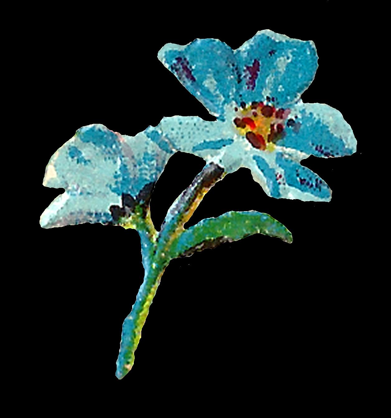 Teal watercolor flower clipart vector download Antique Images: Pastel Floral Clipart Digital Flowers Pink Blue ... vector download