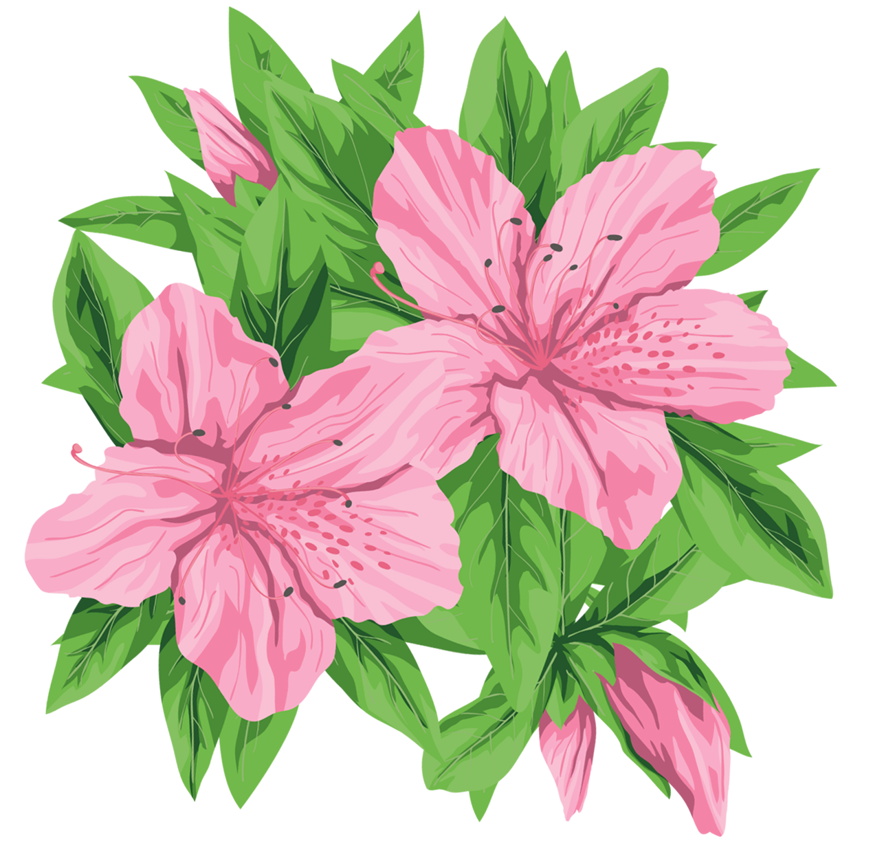 Realistic flower bouquet clipart vector library library Pink Flowers PNG Clip-Art Image | ดอกไม้ | Pinterest | Art images ... vector library library